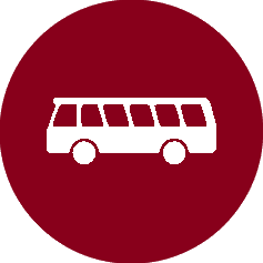 Navetta autobus Dittaio